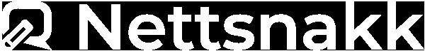 Nettsnakk Logo